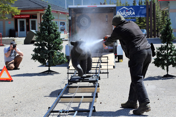 BearAttackSimulator2